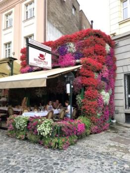 A flower shop- but not a florist!